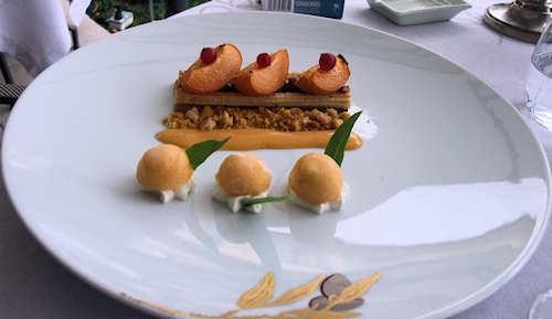 Apricot dessert